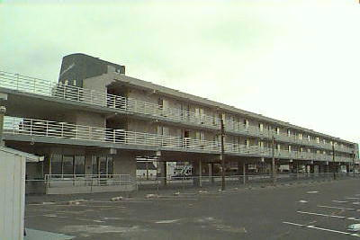 Ocean City Vacation Rentals North End (1st-6th) 831 Atlantic Avenue(Flagship)